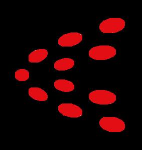 株式会社アクセルスペース